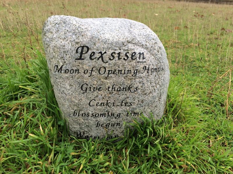 Pexsisen stone